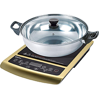 POWERPAC INDUCTION COOKER W STAINLESS STEEL POT PPIC848